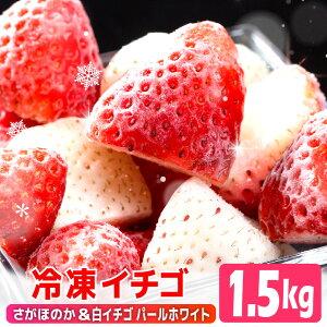 【ふるさと納税】SF19003R 冷凍いちご2種ミックス(パールホワイト&さがほのか)1.5kg