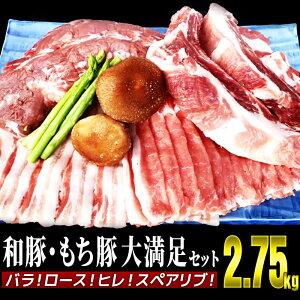 【ふるさと納税】SI210005R 【和豚もち豚】大満足セット2.75kg バラ!ロース!ヒレ!スペアリブ!