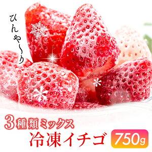 【ふるさと納税】KN210001R 佐賀県産 冷凍いちご3種ミックス 750g