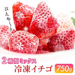 【ふるさと納税】SF210001R 冷凍いちご2種ミックス(パールホワイト&さがほのか)750g