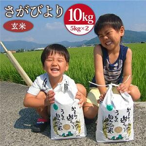 【ふるさと納税】<令和3年産 新米>さがびより(玄米5kg×2袋) 農薬、化学肥料を極限まで減らした、ひなたむらのお米 [HAC003] 特A米 特A評価 10kg 佐賀