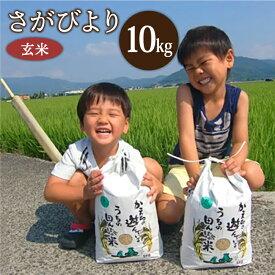 【ふるさと納税】<先行予約><令和3年産 新米>さがびより(玄米10kg) 農薬・化学肥料を極限まで減らした、ひなたむらのお米 [HAC004] 特A米/特A評価