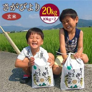 【ふるさと納税】<先行予約><令和3年産 新米>さがびより(玄米10kg×2袋) 農薬・化学肥料を極限まで減らした、ひなたむらのお米 [HAC005] 特A米 特A評価 20kg 佐賀