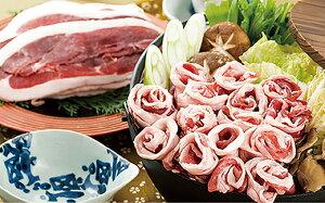 【ふるさと納税】「ヘルシー肉の王様」しし肉スライス