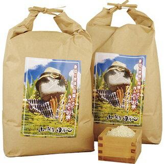 【ふるさと納税】30年度産長崎ヒノヒカリ新米(白米4kgを2袋)