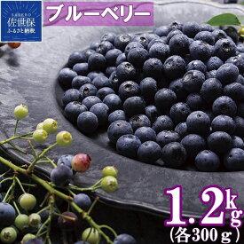 【ふるさと納税】冷凍ブルーベリー「あいあいの雫」1,200g フルーツ ギフト 果物 人気 プレゼント 即日冷凍