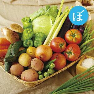 【ふるさと納税】お米と季節野菜のおまかせセット