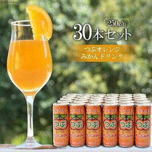【ふるさと納税】つぶオレンジみかんドリンクセット(250ml×30本)