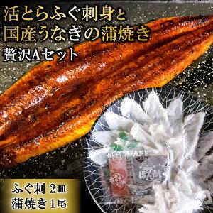 【ふるさと納税】活とらふぐ刺身と国産うなぎの蒲焼き贅沢Aセット(ふぐ刺2皿・蒲焼き1尾)