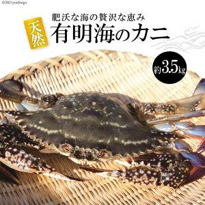 【ふるさと納税】天然の好漁場・肥沃な海の贅沢な恵み 有明海のワタリガニ(ガネ)約3.5kg