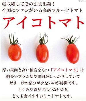アイコトマト