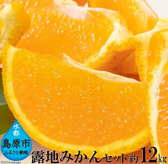【ふるさと納税】みかんセット(約12kg)