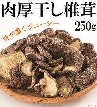 【ふるさと納税】肉厚干し椎茸