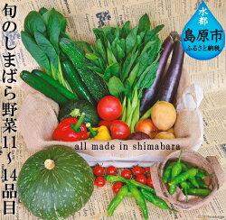 旬のしまばら野菜