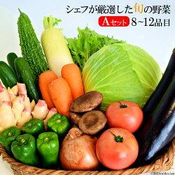 【ふるさと納税】シェフが厳選した旬の野菜〜ペニンシュラ・ベジタブル(島べジ)〜Aセット