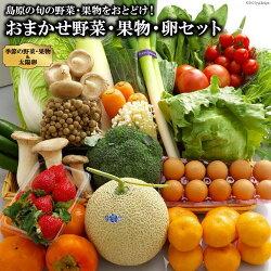 https://image.rakuten.co.jp/f422037-shimabara/cabinet/yasai/ae236_01.jpg