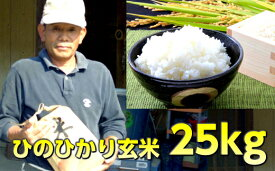 【ふるさと納税】ひのひかり 玄米 25kg ヒノヒカリ 穀物 国産 長崎県 九州 送料無料