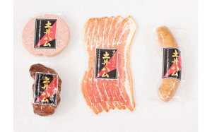 【ふるさと納税】土井ハムセットC 手づくりハム 4種 合計約450g 日本初伝来時のドイツ式製法 ソーセージ スモークベーコン あらびきフランクフルト 焼豚 詰め合わせ 詰合せ お肉 おかず おつ