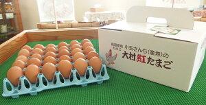 【ふるさと納税】大村 紅 たまご 40個入 赤卵 タマゴ 鶏卵 生卵 新鮮 国産 長崎県 九州 送料無料