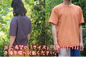 【ふるさと納税】草木の完熟 Tシャツ 1枚 選べるカラー バインダーリブ オーガニックコットン S M L 2L 3L 4L 綿100% おしゃれ ファッション 長崎県 九州 送料無料