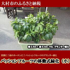 【ふるさと納税】0188.パッションフルーツの移動式緑化(小)