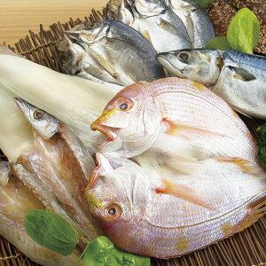 【ふるさと納税】豪華干物詰合せ&天然塩わかめ・赤ウニセット