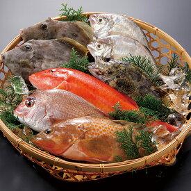 【ふるさと納税】平戸市場直送!獲れたて鮮魚(冷凍)