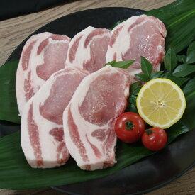 【ふるさと納税】【B0-009】長崎県産豚ロース・テキカツ用5枚