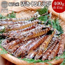 【ふるさと納税】新松浦漁協 活きくるまえび400g【B3-001】