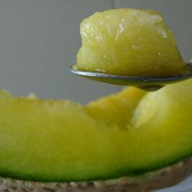【ふるさと納税】【A5-012】まさに果実の王様 松浦アールスメロン 糖度14度以上、1.4kg以上1玉入り