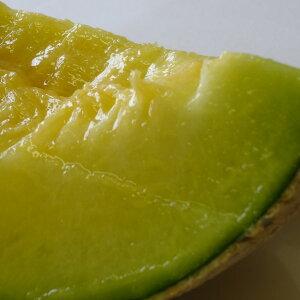 【ふるさと納税】【B4-012】まさに果実の王様 松浦アールスメロン 糖度14度以上、1.4kg以上2玉入り