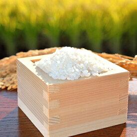 【ふるさと納税】【B4-020】令和2年度産米 お弁当屋さんが太鼓判!棚田浮立の里のお米 10kg