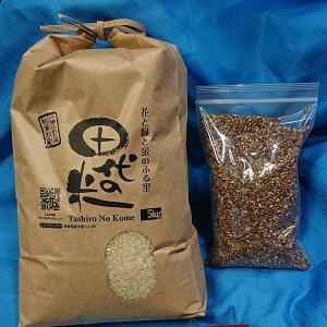 【ふるさと納税】【B0-049】限定品!!田代の米5kgともち麦500gのセット