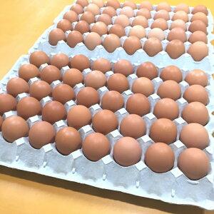 【ふるさと納税】【B0-018-02】養鶏場直送!松浦の赤たまご『コクのぷるたま』大きめサイズ70個+破卵保障10個【2月発送】