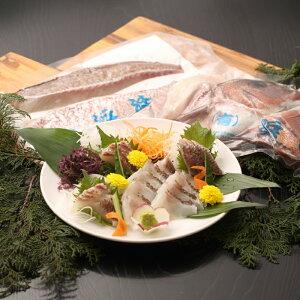 【ふるさと納税】【B5-006】真鯛1匹柵どり済みで刺身・焼物・煮物に扱いやすさ抜群!よか鯛バイ!