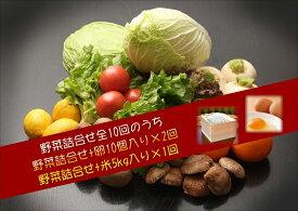 【ふるさと納税】【I0-006】季節の野菜詰め合わせの定期便10回(上旬)