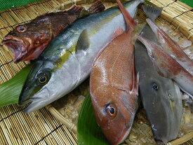 【ふるさと納税】高級鮮魚セット