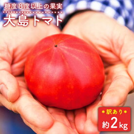【ふるさと納税】【先行予約】【訳あり】糖度8度以上の果実!大島トマト 約2kg【数量限定】<大島造船所農産G> [CCK007]