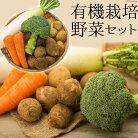 【ふるさと納税】有機栽培野菜セット