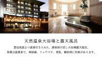 【ふるさと納税】雲仙温泉宿泊プラン「雲仙スカイホテル」2名様1泊2食付送迎および豪華周遊ツアー(観光)つき