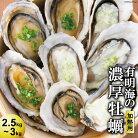 【ふるさと納税】瑞穂産牡蠣2.5kg〜3kg