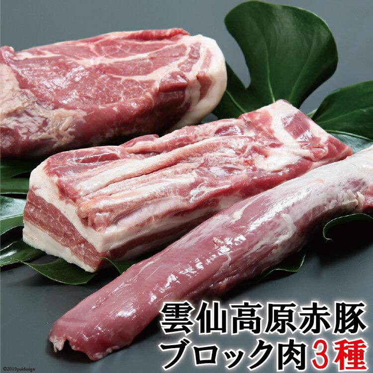 【ふるさと納税】長崎県産 雲仙高原赤豚 【ブロック肉3種】 約1900g