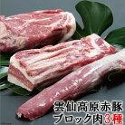 【ふるさと納税】長崎県産雲仙高原赤豚【ブロック肉3種】約1900g