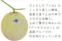 【ふるさと納税】メロンの王様アールスメロン2玉(3.5キロ以上)