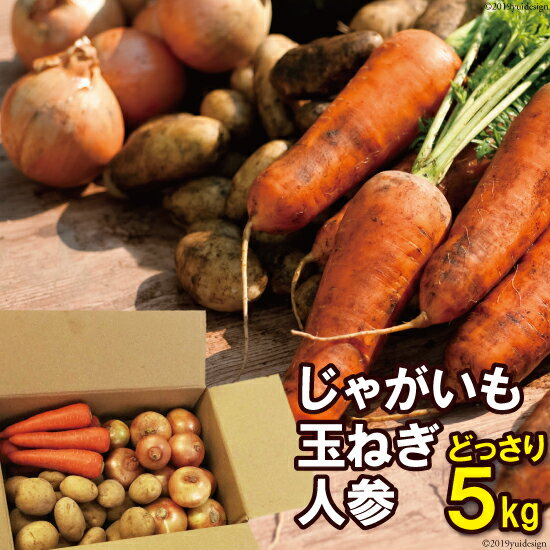 【ふるさと納税】季節の野菜【じゃが・玉ねぎ・人参】セット【雲仙の畑よりお届けします】冬限定品 5kg