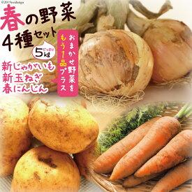 【ふるさと納税】【春の新野菜セット】新じゃがいも・新玉ねぎ・春人参の基本野菜に自慢の旬野菜を1品セットでお届け! 約5kg