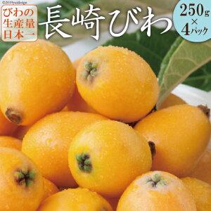 【ふるさと納税】【数量限定】初夏の訪れを感じる「長崎びわ」 ハウス栽培で1つ1つ丁寧に育てました