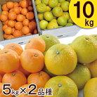【ふるさと納税】季節の柑橘詰合せセットみかん2種類(5キロ×2箱)10キロ