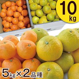 【ふるさと納税】柑橘詰合せセット みかん 2種類(5キロ×2箱)10キロ ※2020年11月下旬〜2021年3月中旬に順次発送予定