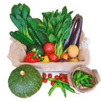 【ふるさと納税】旬鮮雲仙野菜の詰め合わせ